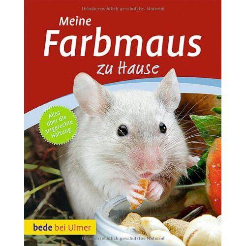 Melanie Teubler - Meine Farbmaus zu Hause - Preis vom 17.05.2021 04:44:08 h