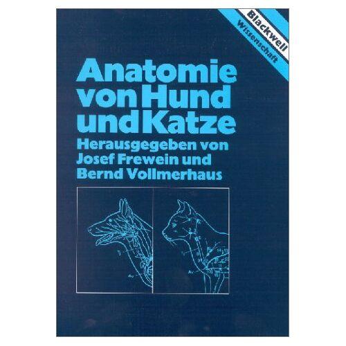 - Anatomie von Hund und Katze - Preis vom 19.06.2021 04:48:54 h