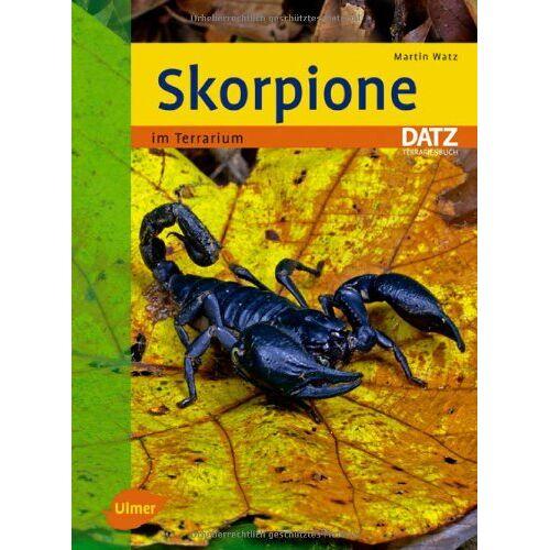 Martin Watz - Skorpione im Terrarium - - Preis vom 17.05.2021 04:44:08 h
