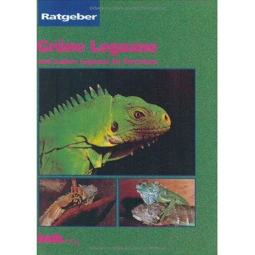 Ferrel, Shelly K. - Grüne Leguane, Ratgeber: Und andere Leguane im Terrarium - Preis vom 17.05.2021 04:44:08 h