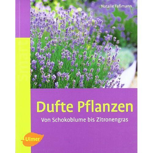 Natalie Faßmann - Dufte Pflanzen: Von Schokoblume bis Zitronengras - Preis vom 12.10.2021 04:55:55 h