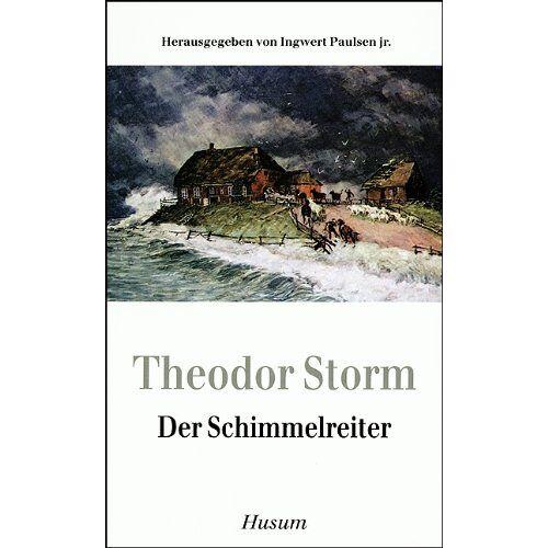 Storm Der Schimmelreiter - Preis vom 18.06.2021 04:47:54 h