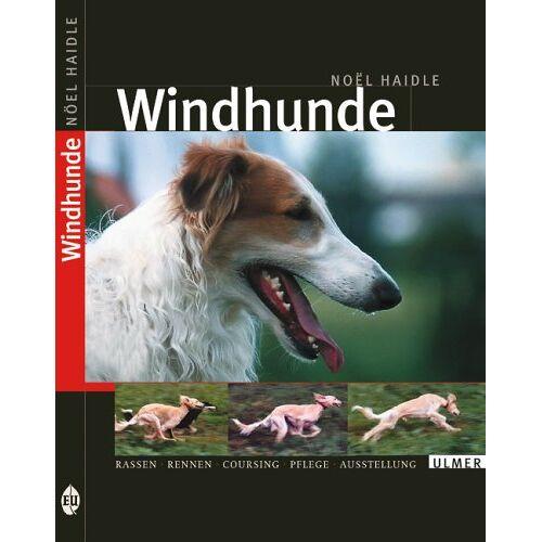 Noel Haidle - Windhunde - Preis vom 13.10.2021 04:51:42 h