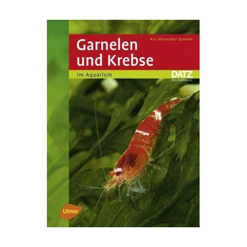 Quante, Kai Alexander - Garnelen und Krebse im Aquarium - - Preis vom 22.06.2021 04:48:15 h