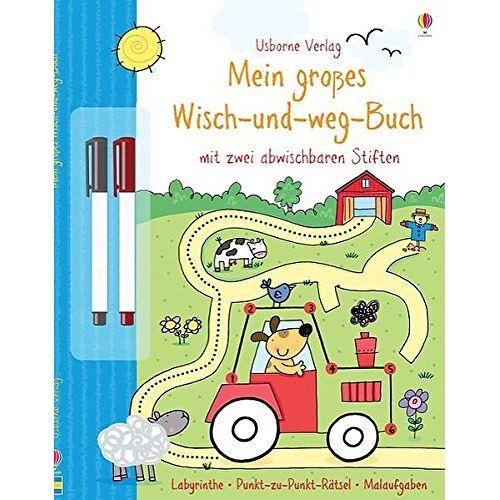 Sam Taplin - Mein großes Wisch-und-weg-Buch: mit abwischbaren Stiften - Preis vom 13.06.2021 04:45:58 h
