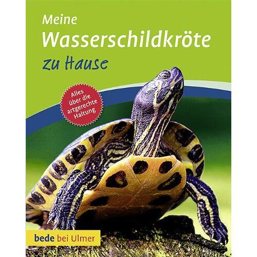 Tina Gorf - Meine Wasserschildkröte zu Hause - Preis vom 12.06.2021 04:48:00 h