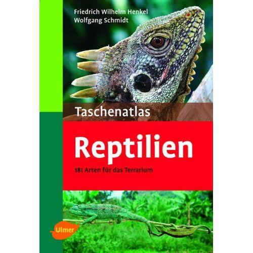 Henkel, Friedrich W - Taschenatlas Reptilien: 182 Arten für das Terrarium - Preis vom 13.06.2021 04:45:58 h