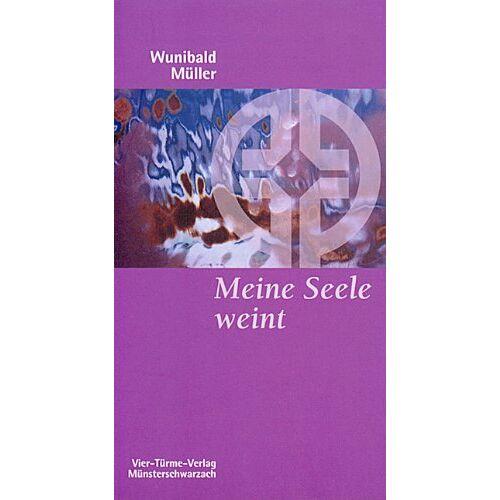 Wunibald Müller - Meine Seele weint: Die therapeutische Wirkung der Psalmen für die Trauerarbeit - Preis vom 29.07.2021 04:48:49 h