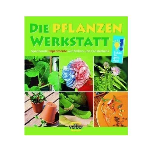 Ulrike Berger - Die Pflanzen-Werkstatt: Spannende Experimente auf Balkon und Fensterbank - Preis vom 12.06.2021 04:48:00 h