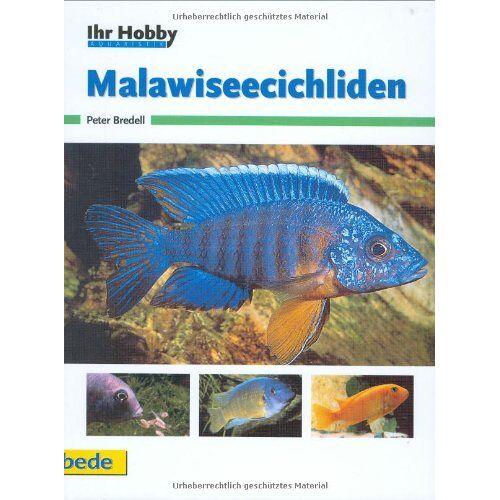 Peter Bredell - Malawiseecichliden, Ihr Hobby - Preis vom 14.06.2021 04:47:09 h