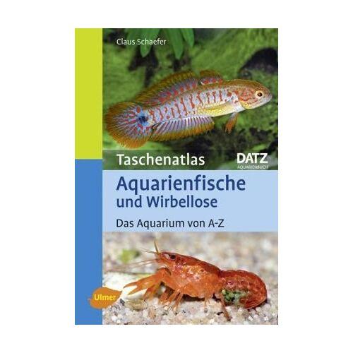 Claus Schaefer - Taschenatlas Aquarienfische und Wirbellose: Das Aquarium von A-Z - Preis vom 20.06.2021 04:47:58 h