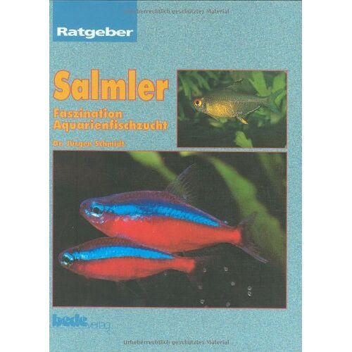 Jürgen Schmidt - Salmler, Ratgeber - Preis vom 11.06.2021 04:46:58 h