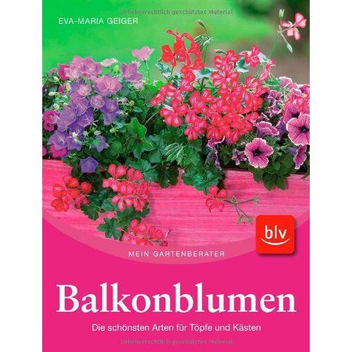Eva-Maria Geiger - Balkonblumen: Die schönsten Arten für Töpfe und Kästen - Preis vom 28.07.2021 04:47:08 h