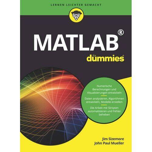 Jim Sizemore - Matlab für Dummies - Preis vom 19.06.2021 04:48:54 h