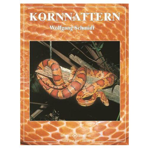 Wolfgang Schmidt - Kornnattern - Preis vom 17.05.2021 04:44:08 h