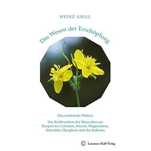 Heinz Grill - Das Wesen der Erschöpfung - Preis vom 11.06.2021 04:46:58 h