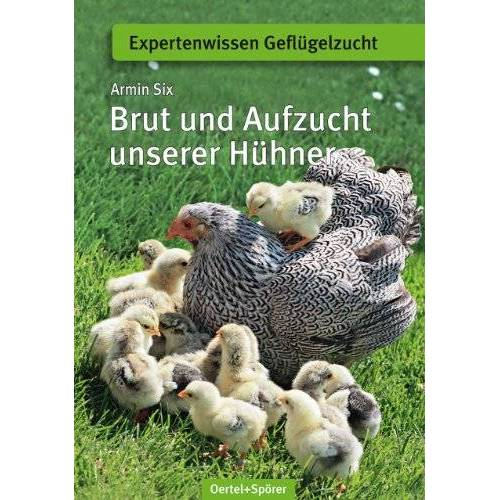 Armin Six - Brut und Aufzucht unserer Hühner - Preis vom 12.09.2021 04:56:52 h