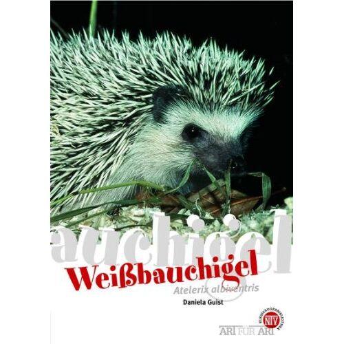 Daniela Guist - Weißbauchigel: Art für Art - Preis vom 13.06.2021 04:45:58 h