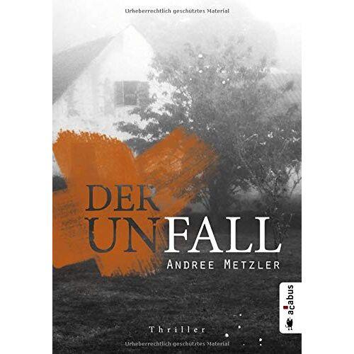 Andree Metzler - Der Unfall: Thriller - Preis vom 13.06.2021 04:45:58 h