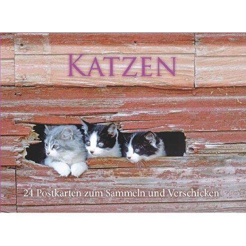 - Postkartenbuch Katzen - Preis vom 24.07.2021 04:46:39 h