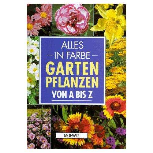 Peter McHoy - Alles in Farbe: Gartenpflanzen von A - Z - Preis vom 17.05.2021 04:44:08 h