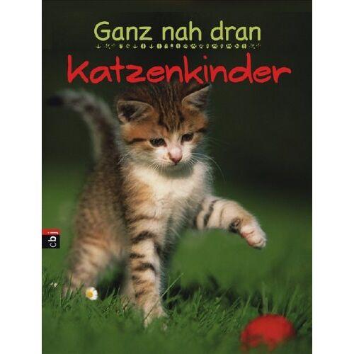 - Ganz nah dran - Katzenkinder - Preis vom 13.06.2021 04:45:58 h