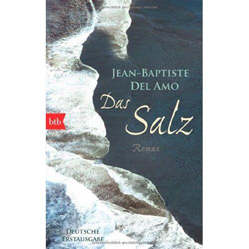 Jean-Baptiste Del Amo - Das Salz: Roman - Preis vom 17.05.2021 04:44:08 h
