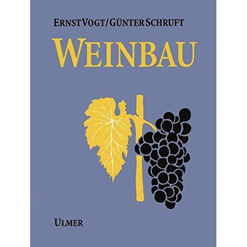 Ernst Vogt - Weinbau - Preis vom 19.06.2021 04:48:54 h