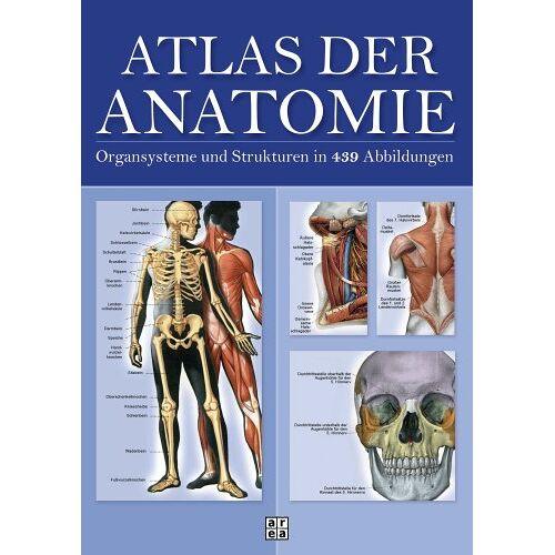 Barbara Weitz - Atlas der Anatomie. Organsystem und Strukturen in 439 Abbildungen - Preis vom 15.05.2021 04:43:31 h