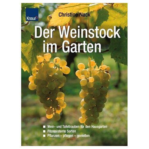 Christine Nack - Der Weinstock im Garten - Preis vom 18.04.2021 04:52:10 h