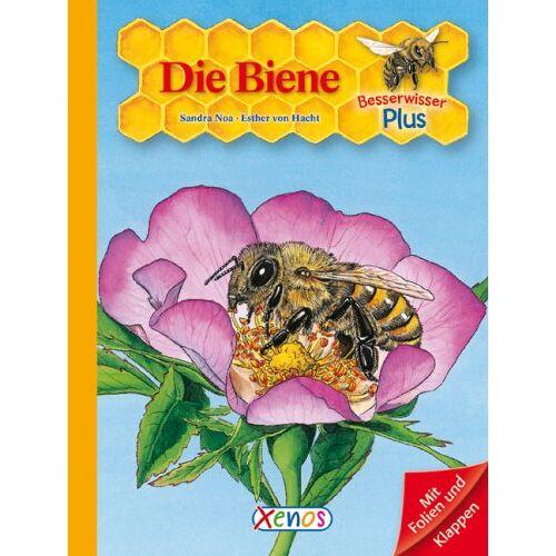 Sandra Noa - Besserwisser Plus. Die Biene - Preis vom 15.04.2021 04:51:42 h