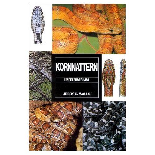 Walls, Jerry G. - Kornnattern im Terrarium - Preis vom 20.10.2020 04:55:35 h