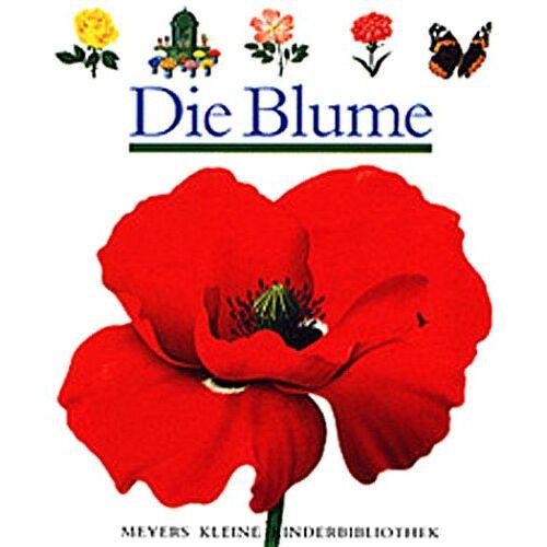 René Mettler - Die Blume - Preis vom 05.09.2020 04:49:05 h
