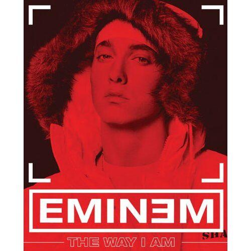Eminem - The Way I Am - Preis vom 12.05.2021 04:50:50 h