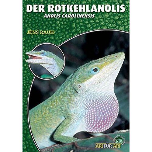 Jens Rauh - Der Rotkehlanolis: Anolis carolinensis (Art für Art / Terraristik) - Preis vom 20.10.2020 04:55:35 h