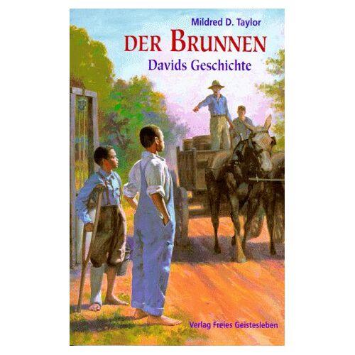 Taylor Der Brunnen. ( Ab 11 J.). Davids Geschichte - Preis vom 09.04.2021 04:50:04 h