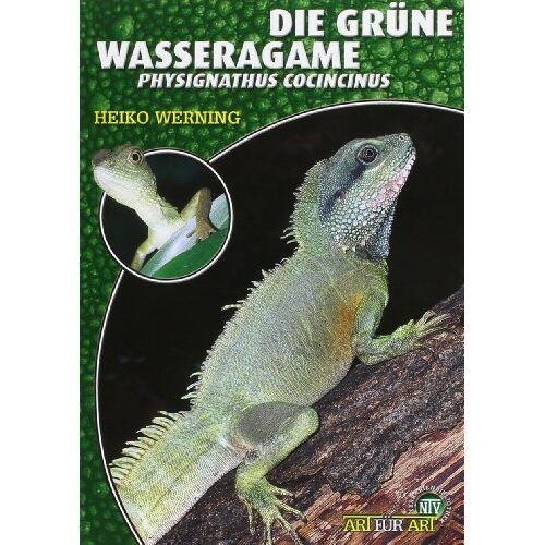 Heiko Werning - Die Grüne Wasseragame: Physignathus cocincinus - Preis vom 15.04.2021 04:51:42 h