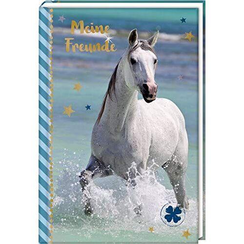- Freundebuch – Pferdefreunde – Meine Freunde: Pferd am Meer - Preis vom 13.11.2019 05:57:01 h