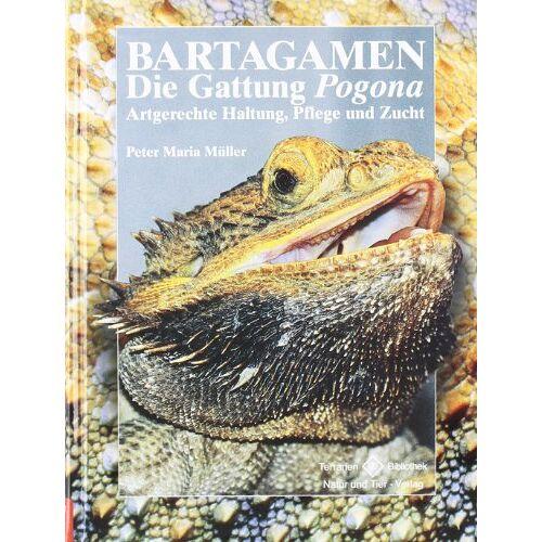 Peter-Maria Müller - Bartagamen: Die Gattung Pogona - Artgerechte Haltung, Pflege und Zucht - Preis vom 05.05.2021 04:54:13 h