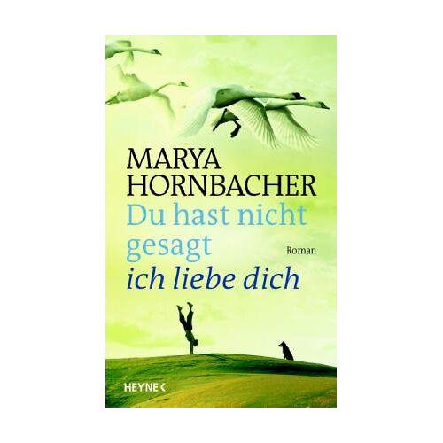 Marya Hornbacher - Du hast nicht gesagt, ich liebe dich - Preis vom 21.10.2020 04:49:09 h