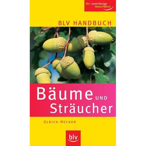 Ulrich Hecker - BLV Handbuch Bäume und Sträucher: Der zuverlässige Naturführer - Preis vom 03.05.2021 04:57:00 h