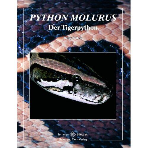 Henry Bellosa - Tigerpython - Preis vom 20.10.2020 04:55:35 h
