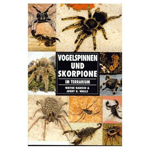 Wayne Rankin - Vogelspinnen und Skorpione im Terrarium - Preis vom 06.09.2020 04:54:28 h