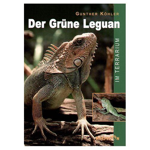 Gunther Köhler - Der Grüne Leguan im Terrarium - Preis vom 18.10.2020 04:52:00 h