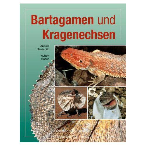 Bosch Bartagamen und Kragenechsen - Preis vom 05.05.2021 04:54:13 h