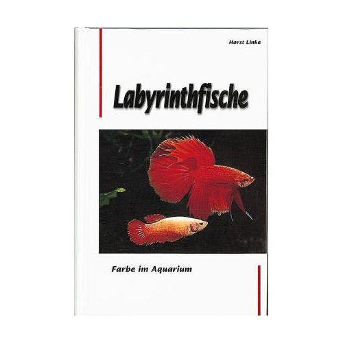 Horst Linke - Farbe im Aquarium - Labyrinthfische. Ein Handbuch für Bestimmung, Pflege und Zucht - Preis vom 28.02.2021 06:03:40 h