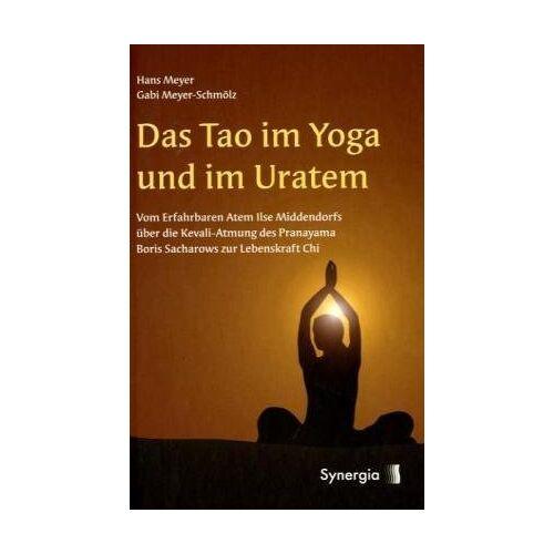 Hans Meyer - Das Tao im Yoga und im Uratem - Preis vom 28.03.2020 05:56:53 h