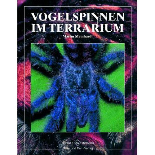 Martin Meinhardt - Vogelspinnen im Terrarium - Preis vom 06.09.2020 04:54:28 h