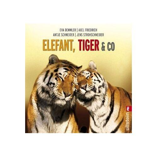 Eva Demmler - Elefant, Tiger & Co. - Preis vom 16.04.2021 04:54:32 h