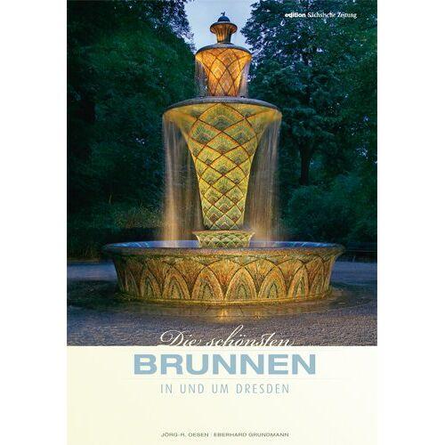 Eberhard Grundmann - Die schönsten Brunnen in und um Dresden - Preis vom 20.01.2021 06:06:08 h